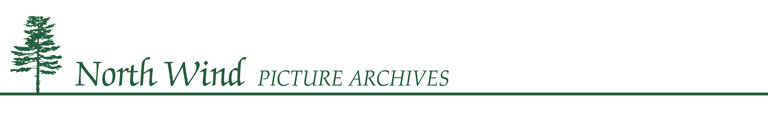 North Wind Pictures Archives logo